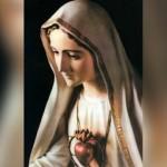 Programa da visita da Imagem peregrina da Virgem de Fátima a Aparecida